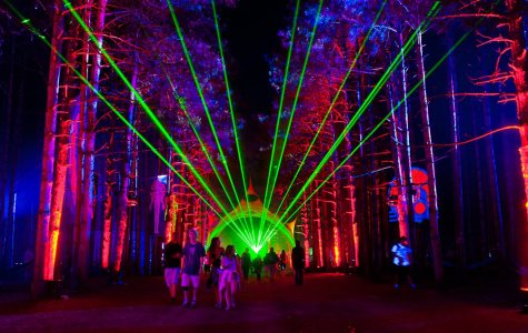 Dancing In the Woods: Electric Forest